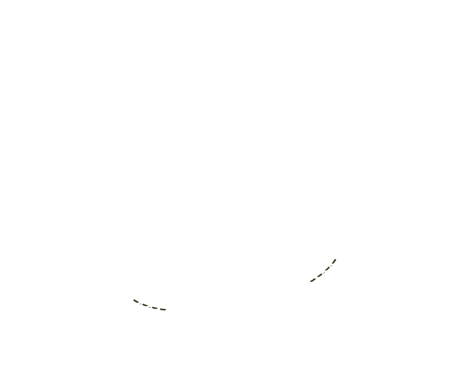 Mein erster Naschgarten